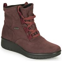 Chaussures Femme Boots Romika Westland CALAIS 08 Bordeaux