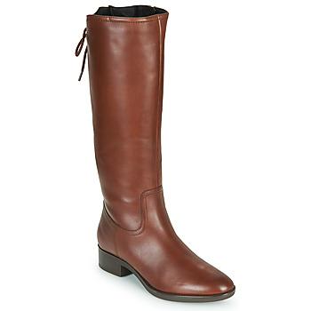 Chaussures Femme Bottes ville Geox FELICITY Marron