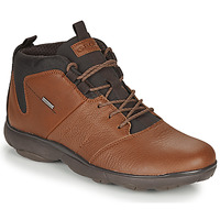 Chaussures Homme Boots Geox NEBULA 4 X 4 B ABX Marron