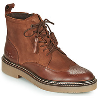 Chaussures Femme Boots Kickers OXANYHIGH Marron