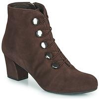 Chaussures Femme Bottines Perlato JAMOVE Marron