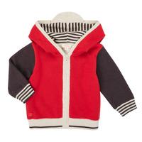 Vêtements Garçon Gilets / Cardigans Catimini CR18000-38 Multicolore