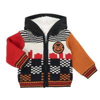 Vêtements Garçon Gilets / Cardigans Catimini CR18062-17 Multicolore