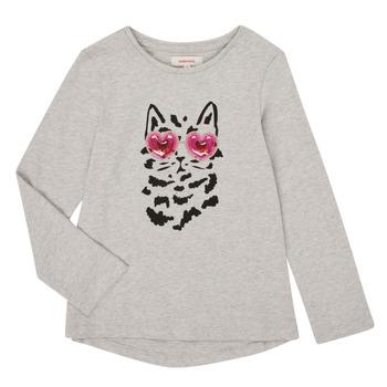 Vêtements Fille T-shirts manches longues Catimini CR10275-26-J Gris