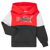 Vêtements Garçon Sweats Puma ALPHA HOODY Multicolore