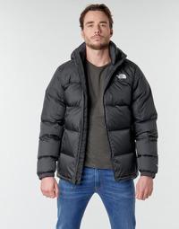 Vêtements Homme Doudounes The North Face DIABLO DOWN HOODIE Noir
