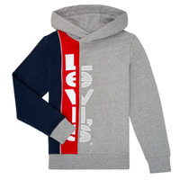 Vêtements Garçon Sweats Levi's STRIPED HOOKUP HOODIE Gris