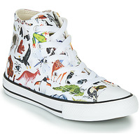 Chaussures Enfant Baskets montantes Converse Chuck Taylor All Star - Science Class Blanc / Multicolore