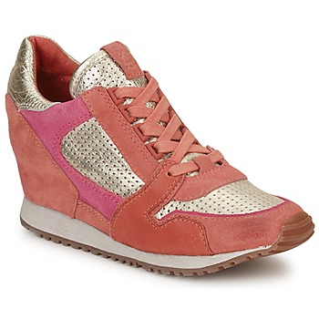 Chaussures Femme Baskets basses Ash DEAN BIS Or /  Corail /  Rose