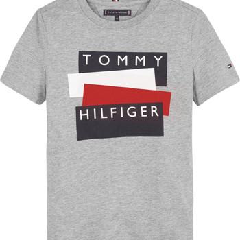 Vêtements Garçon T-shirts manches courtes Tommy Hilfiger KB0KB05849-P6U Gris