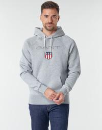 Vêtements Homme Sweats Gant GANT SHIEL HOODIE Gris