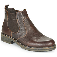Chaussures Homme Boots IgI&CO UOMO FREDDY GTX Marron