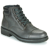 Chaussures Homme Boots IgI&CO UOMO FREDDY GTX Gris