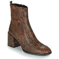 Chaussures Femme Bottines Fericelli NAKE Noir / Marron