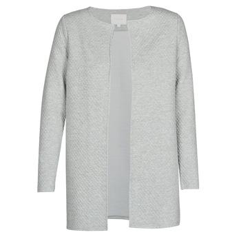 Vêtements Femme Vestes / Blazers Vila VINAJA Gris