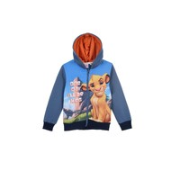 Vêtements Garçon Sweats TEAM HEROES  LION KING SWEAT Multicolore
