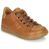 Chaussures Garçon Baskets basses Little Mary DUSTIN Cognac
