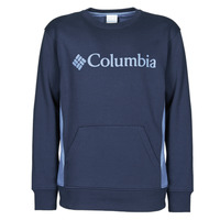 Vêtements Homme Sweats Columbia MINA% RIVER CREW Bleu