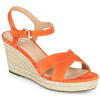 Chaussures Femme Sandales et Nu-pieds Geox D SOLEIL Orange