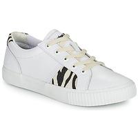 Chaussures Femme Baskets basses Timberland SKYLA BAY OXFORD Blanc