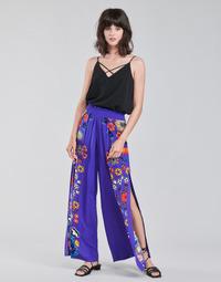 Vêtements Femme Pantalons fluides / Sarouels Desigual CHIPRE Bleu