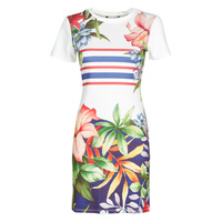 Vêtements Femme Robes courtes Desigual SAIFO Multicolore