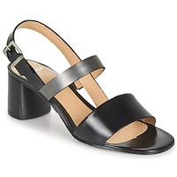Chaussures Femme Sandales et Nu-pieds Perlato 11805-JAMAICA-NOIR Noir