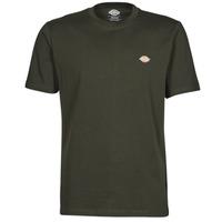 Vêtements Homme T-shirts manches courtes Dickies MAPLETON Kaki