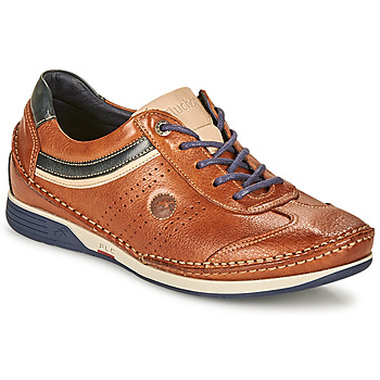 Chaussures Homme Baskets basses Fluchos TORNADO Marron