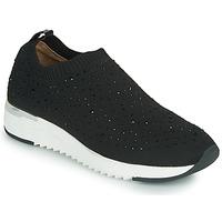 Chaussures Femme Baskets basses Caprice 24700 Noir