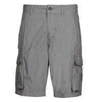 Vêtements Homme Shorts / Bermudas Napapijri NORI Gris