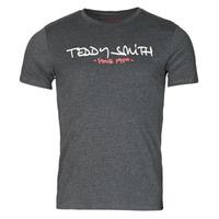 Vêtements Homme T-shirts manches courtes Teddy Smith TICLASS Gris Foncé