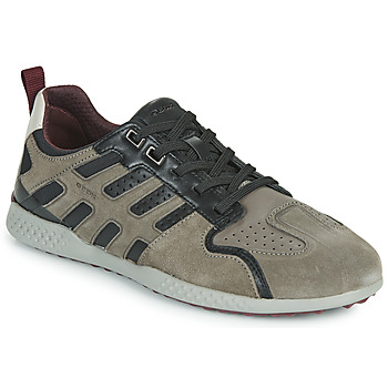Chaussures Homme Baskets basses Geox U SNAKE.2 Gris