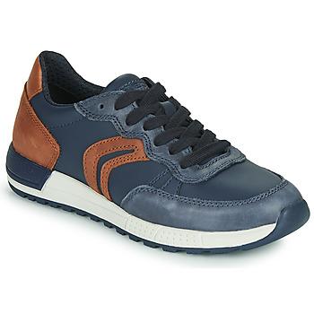 Chaussures Garçon Baskets basses Geox J ALBEN BOY Bleu