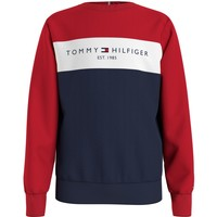Vêtements Garçon Sweats Tommy Hilfiger KB0KB06596-0SM Multicolore