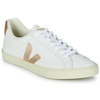 Chaussures Femme Baskets basses Veja ESPLAR LOGO Blanc / Doré
