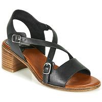 Chaussures Femme Sandales et Nu-pieds Kickers VOLUBILIS Noir