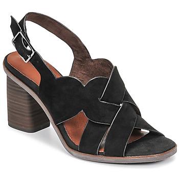 Chaussures Femme Sandales et Nu-pieds Tamaris NOAMY Noir