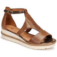 Chaussures Femme Sandales et Nu-pieds Tamaris EDA Marron