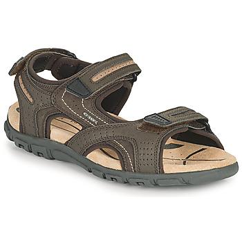 Chaussures Homme Sandales sport Geox UOMO SANDAL STRADA D Marron / Beige