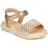 Chaussures Fille Sandales et Nu-pieds Geox SANDAL HAITI GIRL Beige /Doré