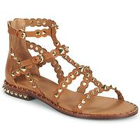 Chaussures Femme Sandales et Nu-pieds Ash PIXEL Marron