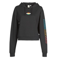 Vêtements Femme Sweats Vans WM OVAL TEEN HOODIE Black