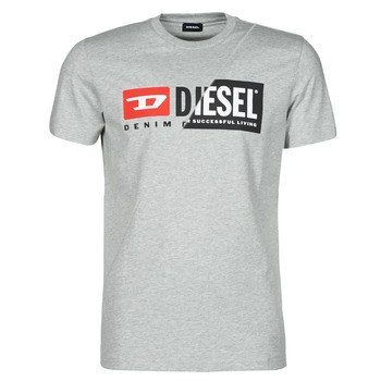 Vêtements Homme T-shirts manches courtes Diesel 00SDP1-0091A-912 Gris