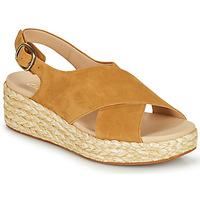 Chaussures Femme Sandales et Nu-pieds Clarks KIMMEI CROSS Marron