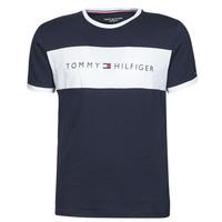 Vêtements Homme T-shirts manches courtes Tommy Hilfiger CN SS TEE LOGO FLAG Marine / Blanc