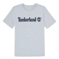 Vêtements Garçon T-shirts manches courtes Timberland NINNO Gris
