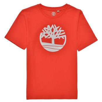 Vêtements Garçon T-shirts manches courtes Timberland LOLLA Rouge