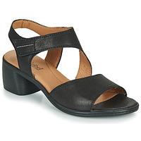 Chaussures Femme Sandales et Nu-pieds Josef Seibel JUNA 02 Noir