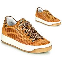 Chaussures Femme Baskets basses IgI&CO SHOUHAI Ocre